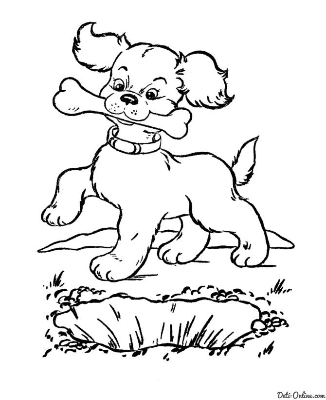 Поздравление для, картинки раскраски с собаками и щенками