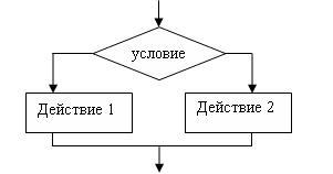 цветов операторы ветвления в паскале схема объявления, фото