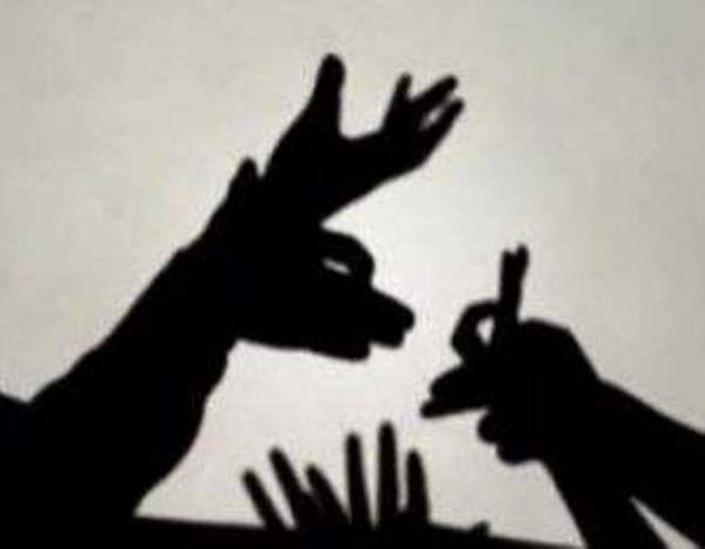 Игры с тенью своими руками фото