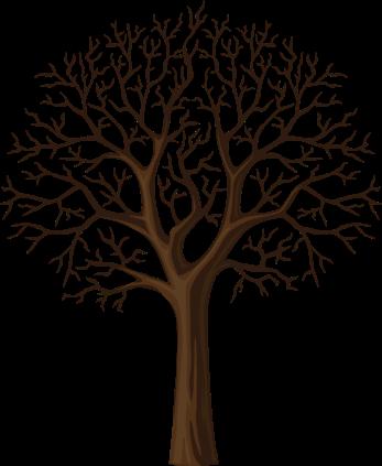 Черный Дерева Ветви Силуэт,